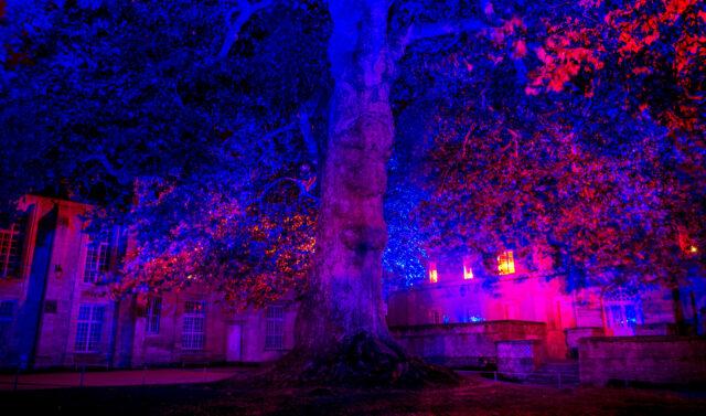 Licht, Kunst und Musik im Atrium, Innenhof Rathaus